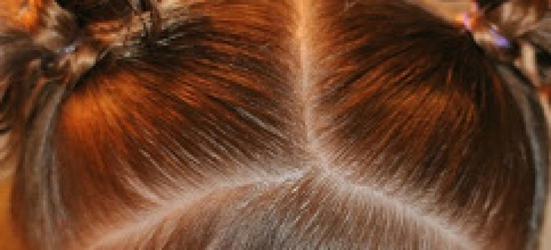 Toddler Hair Bows Tutorial